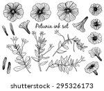 collection of hand drawn... | Shutterstock .eps vector #295326173