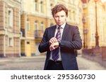 handsome mature caucasian... | Shutterstock . vector #295360730