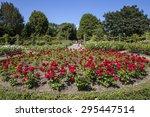Stock photo a beautiful view in queen marys gardens in regents park london 295447514