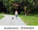 Stock photo woman walking a dog in the park 295464824
