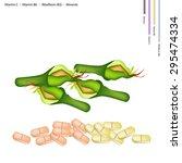 healthcare concept  fresh... | Shutterstock .eps vector #295474334