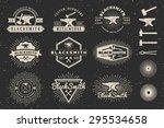 set of modern vintage... | Shutterstock .eps vector #295534658