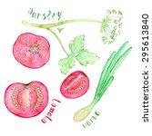 vegetables vector set of hand... | Shutterstock .eps vector #295613840