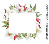watercolor frame isolated... | Shutterstock . vector #295672820