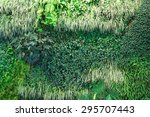 A Living Wall Background...