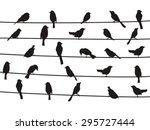 birds on wires | Shutterstock .eps vector #295727444