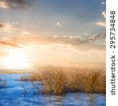 frozen winter lake scene | Shutterstock . vector #295734848