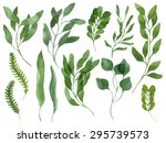 a set of watercolor leaves ... | Shutterstock . vector #295739573