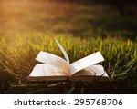 Book On Grass Under The Sun