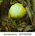 Mysterious Forest With Old...