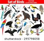vector set of different birds | Shutterstock .eps vector #295798058