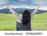 disabled person raise hands on... | Shutterstock . vector #295860890
