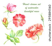 hand drawn vector floral set ... | Shutterstock .eps vector #295884560