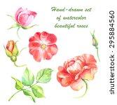 hand drawn vector floral set ... | Shutterstock .eps vector #295884560