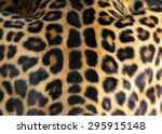 Close Up Real Leopard Skin...