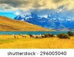 magic light of sunset.  rocks... | Shutterstock . vector #296005040