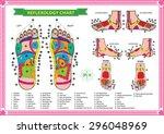 foot reflexology chart with... | Shutterstock .eps vector #296048969