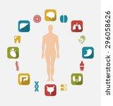 illustration infographic of...   Shutterstock .eps vector #296058626