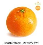 citrus isolated on white... | Shutterstock .eps vector #296099594