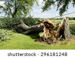 Tornado Storm Damage Causes A...