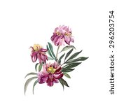 peonies  | Shutterstock . vector #296203754