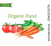 hand drawn watercolor food... | Shutterstock .eps vector #296322074