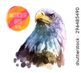 eagle watercolor  bird isolated ... | Shutterstock .eps vector #296485490