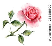 rose. watercolor floral card.... | Shutterstock . vector #296688920