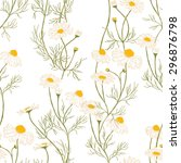 seamless pattern with... | Shutterstock .eps vector #296876798