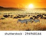african landscape. zebras herd... | Shutterstock . vector #296968166