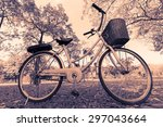 bicycle with chromatic tone | Shutterstock . vector #297043664