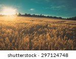 Landscape Picture Of A Wheat...