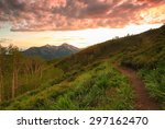 Winding Dirt Trail In The...