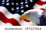 North American Bald Eagle On...