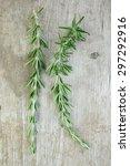 rosemary on wood | Shutterstock . vector #297292916