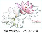 some bright lotus flowers on a... | Shutterstock .eps vector #297301220