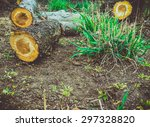 small logs on the ground.  | Shutterstock . vector #297328820