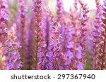 veronica | Shutterstock . vector #297367940