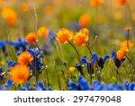 Bright Floral Natural...