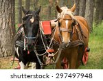 Horses With Carriage On Mount...