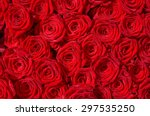Stock photo red rose blossoms view from above for background 297535250