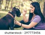 Cute Stafford Terrier Getting A ...