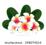 illustration vector of hawaii... | Shutterstock .eps vector #298074014