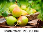 Healthy Organic Pears In The...