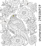 hand drawn bird coloring page | Shutterstock .eps vector #298186919