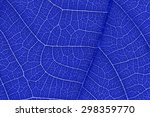 it is design on leaf texture... | Shutterstock . vector #298359770