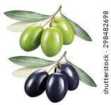 green and black olives with... | Shutterstock . vector #298482698