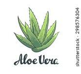 Natural Vector Aloe Vera...