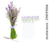 lavender flowers  lavandula ... | Shutterstock . vector #298595006