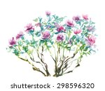 watercolor painting  tree... | Shutterstock . vector #298596320